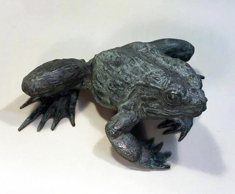 Goliath Frog,  Mark Rossi