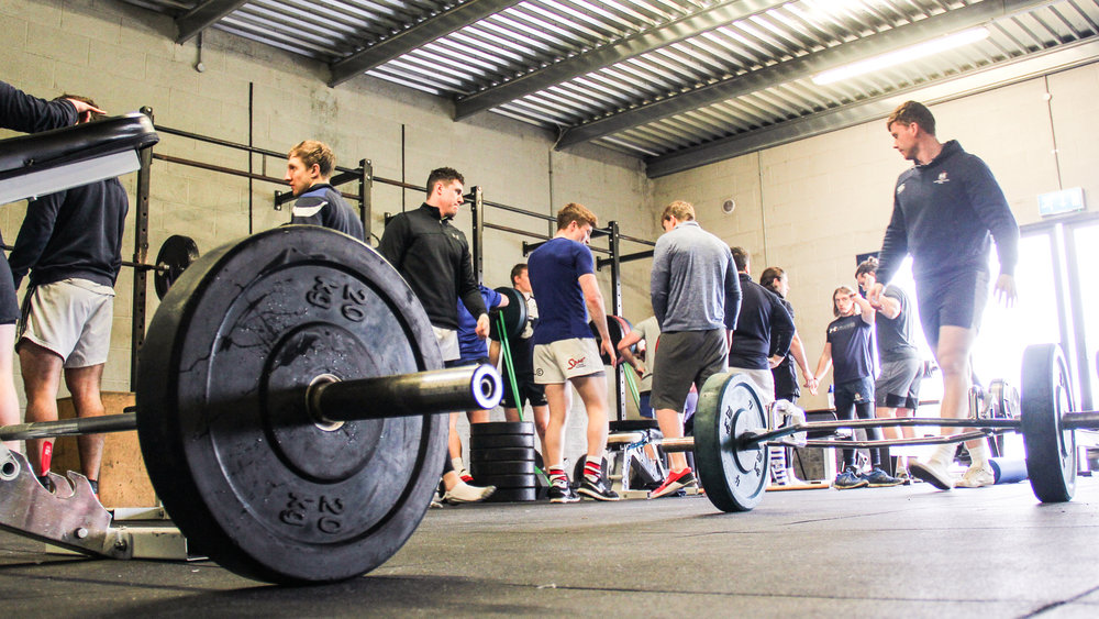 APEC Strength and Conditioning Education Company practical gym workshop in motion.