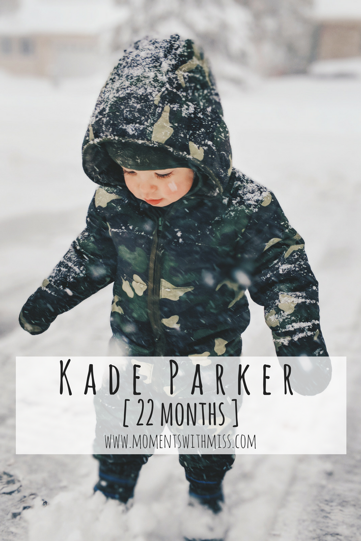 Kade Parker 22 months Life With a Toddler www.momentswithmiss.com 24.png