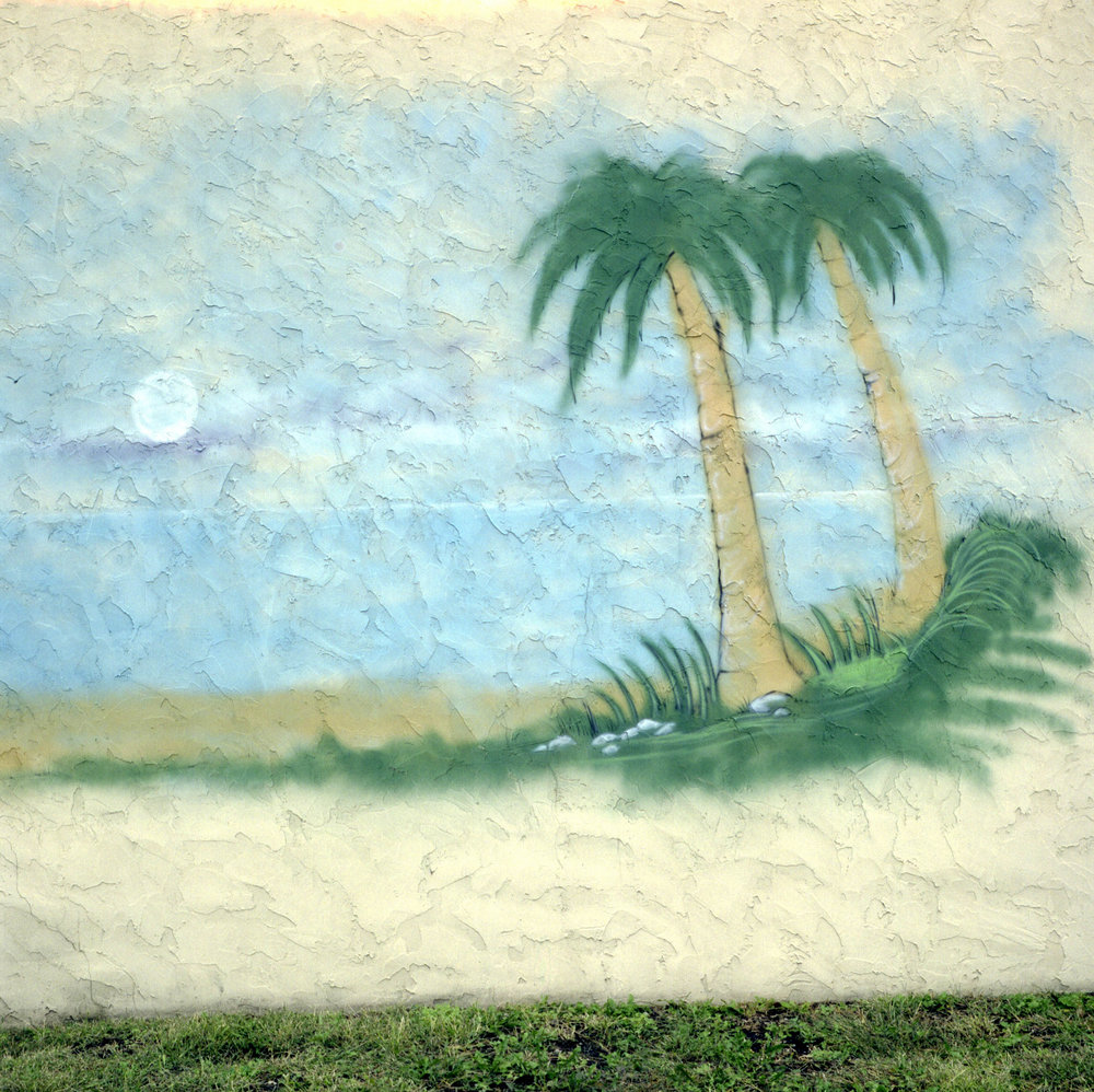 YMAT-056.palm_mural_for_site.jpg