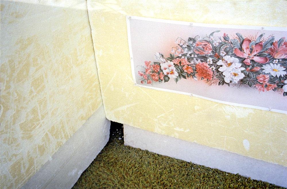 M7-092.couv.art_flowers_2.jpg