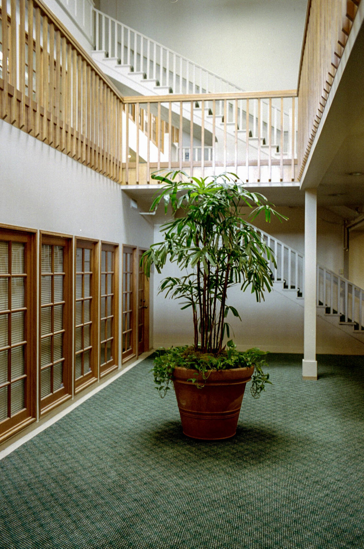 M7-084.couv.plant_office.jpg