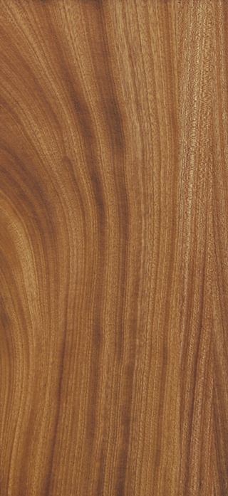 Sapele - Natural Stain