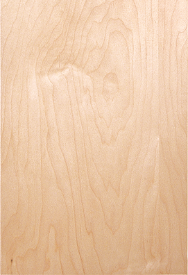 Maple Veneer - natural Stain