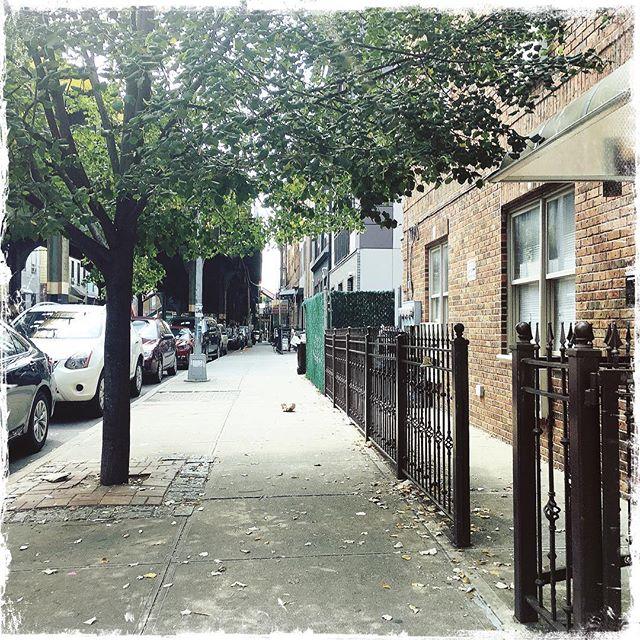 NEIGHBORHOOD SERIES . . . . #CROOKEDGALAXYCROWN #hipstamatic #photography #NYC #neighborhood #photos #random #newyorkcity #perspective #ridgewood #bushwick #queens #brooklyn #series #neighbors #sidewalk #fall #seasons
