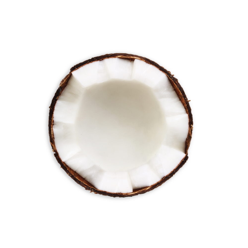 BrightBar_Coconut_Ingredients