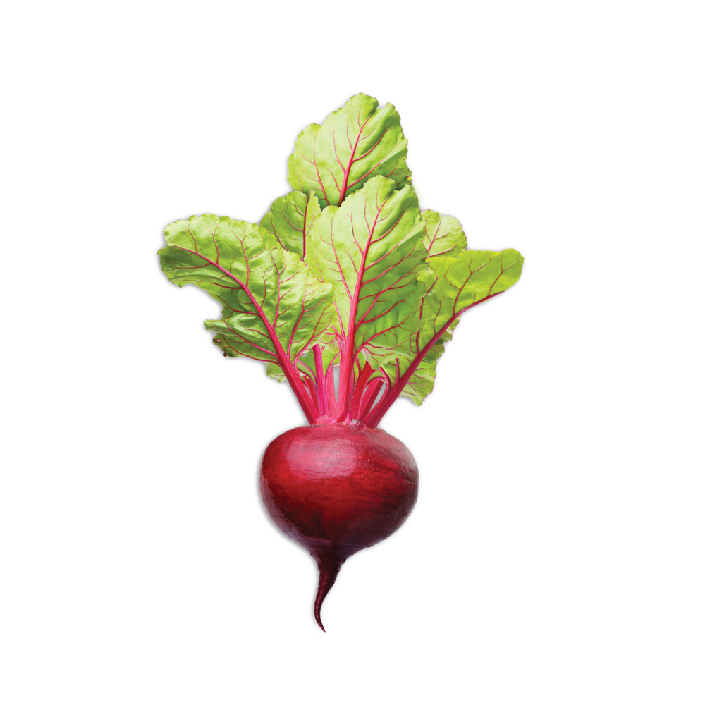 BrightBar_Beet_Ingredients