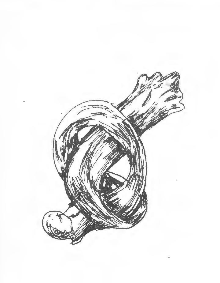 Bone Knot