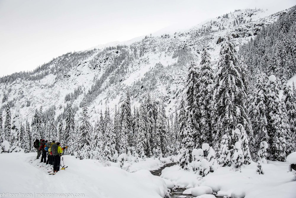 Assessing hazards and ski lines in the Asulkan Valley