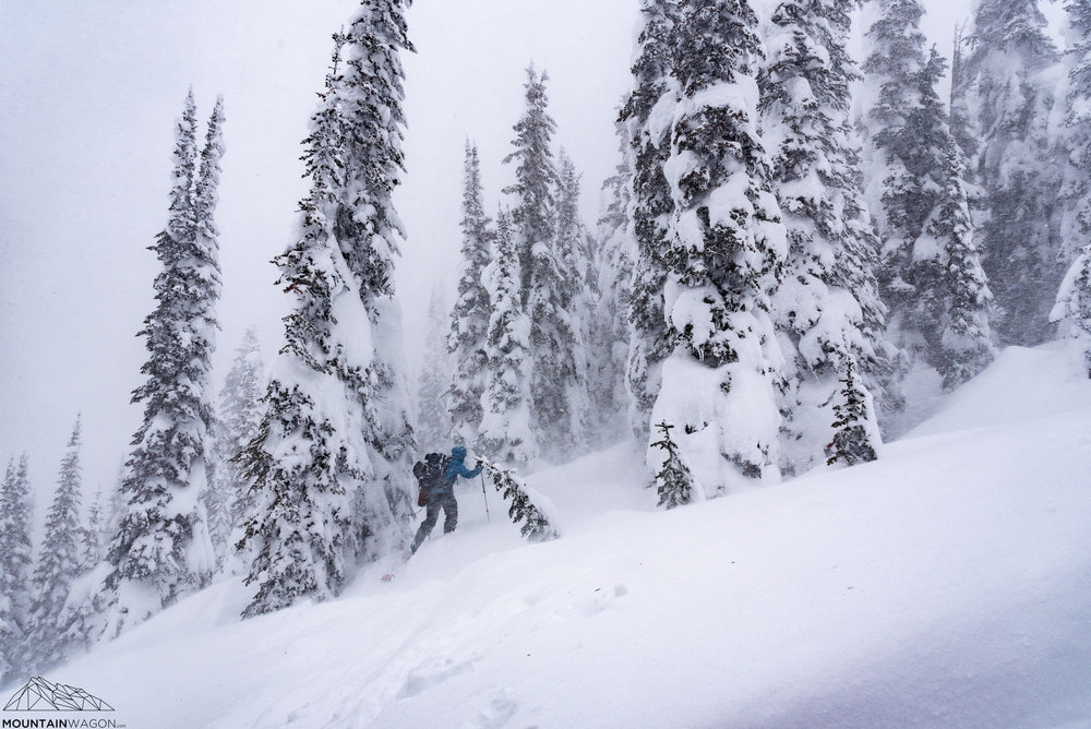 Howling wind, sideways snow, all that good stuff