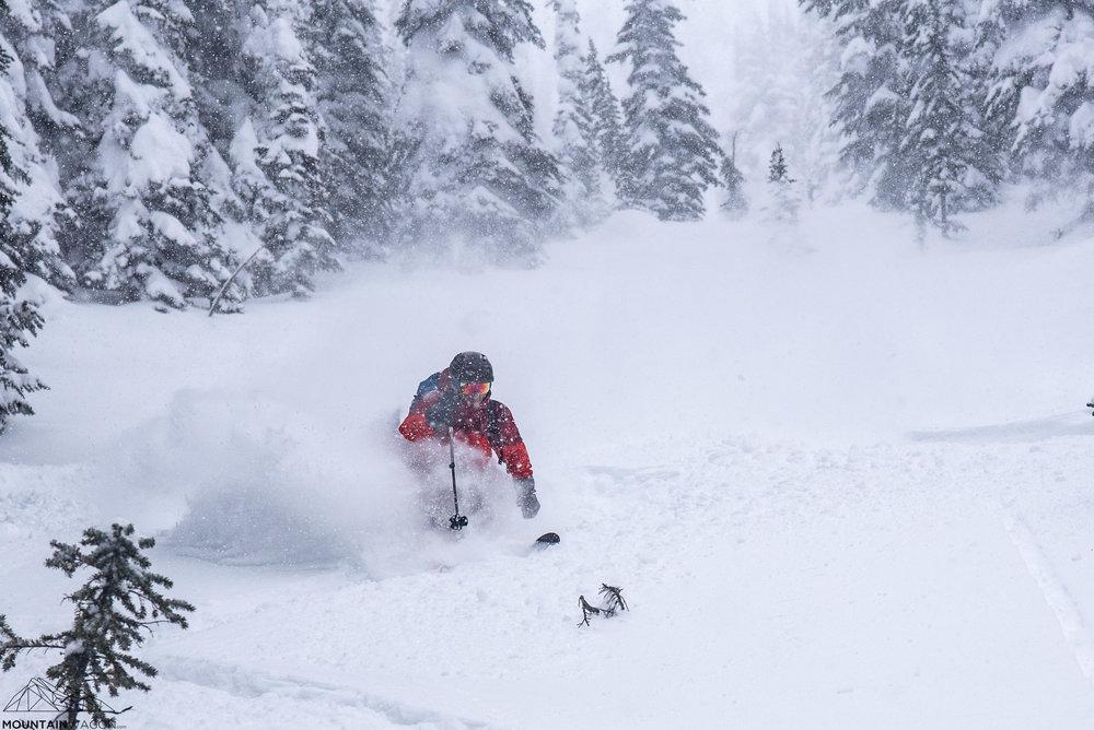 mcgill shoulder powder skiing