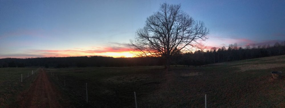 sunset_farm