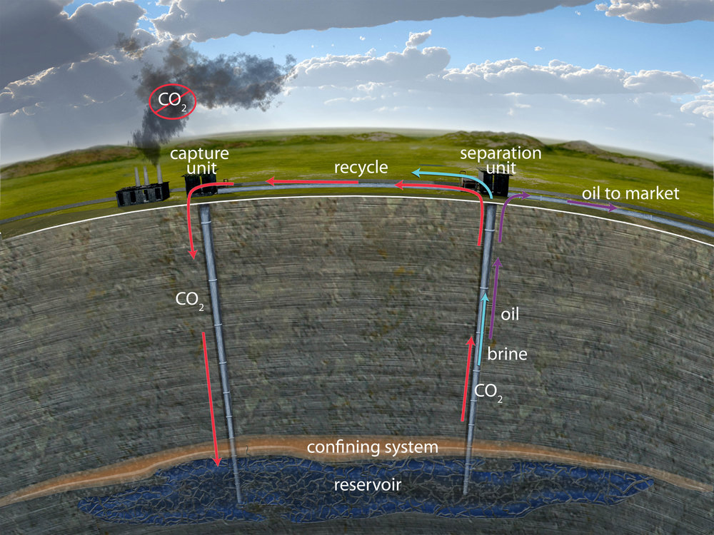 CO2 pumped into the ground can also be used to extract hard-to-recover oil. Credit: Hovorka lab.