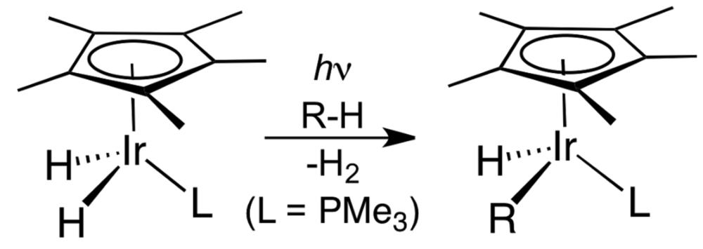 Bergman invented this iridium-based C-H functionalization. Credit: Wikipedia.