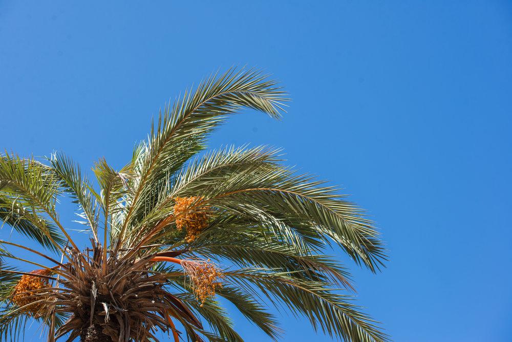 Marruecos_17_24.jpg