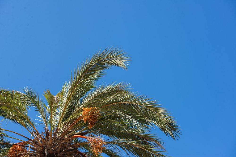 Marruecos_17_25.jpg