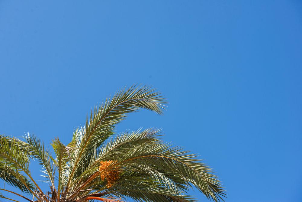 Marruecos_17_26.jpg