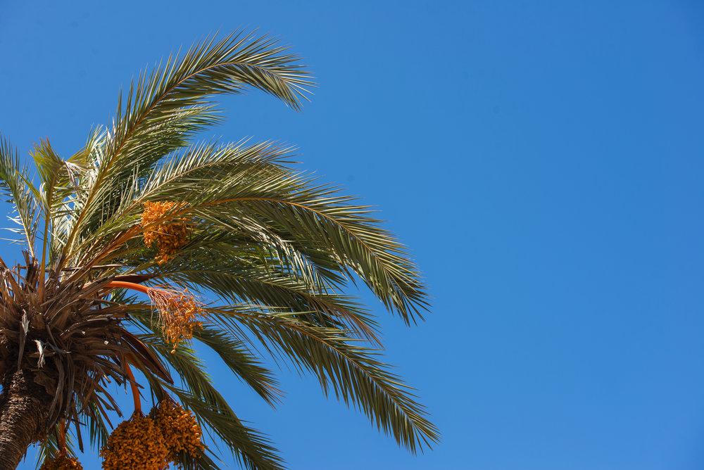 Marruecos_17_27.jpg
