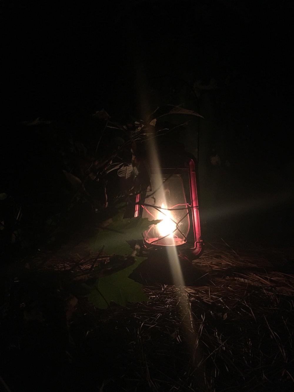 prim-skills-lantern.JPG