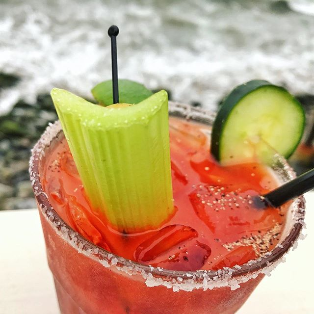 Cali Dreamin' 🌊🌊 Nothing beats sipping Bloodies oceanside in Malibu. Head to @moonshadows_malibu for cucumber infused Bloodies next time you're driving the Pacific Coast Highway. 🌴🚙🏖