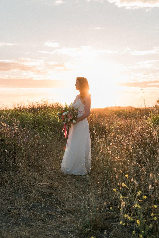 Elopements & Weddings -