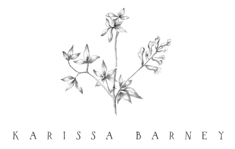 karissa barney photography co.