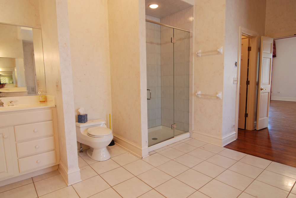 Outdated Naperville Bathroom in Need of Remodeling Before Photo.