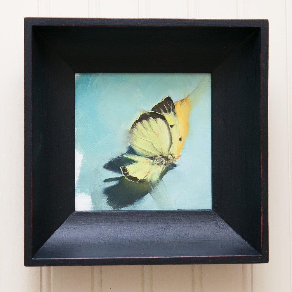 Butterfly Study #2.jpg