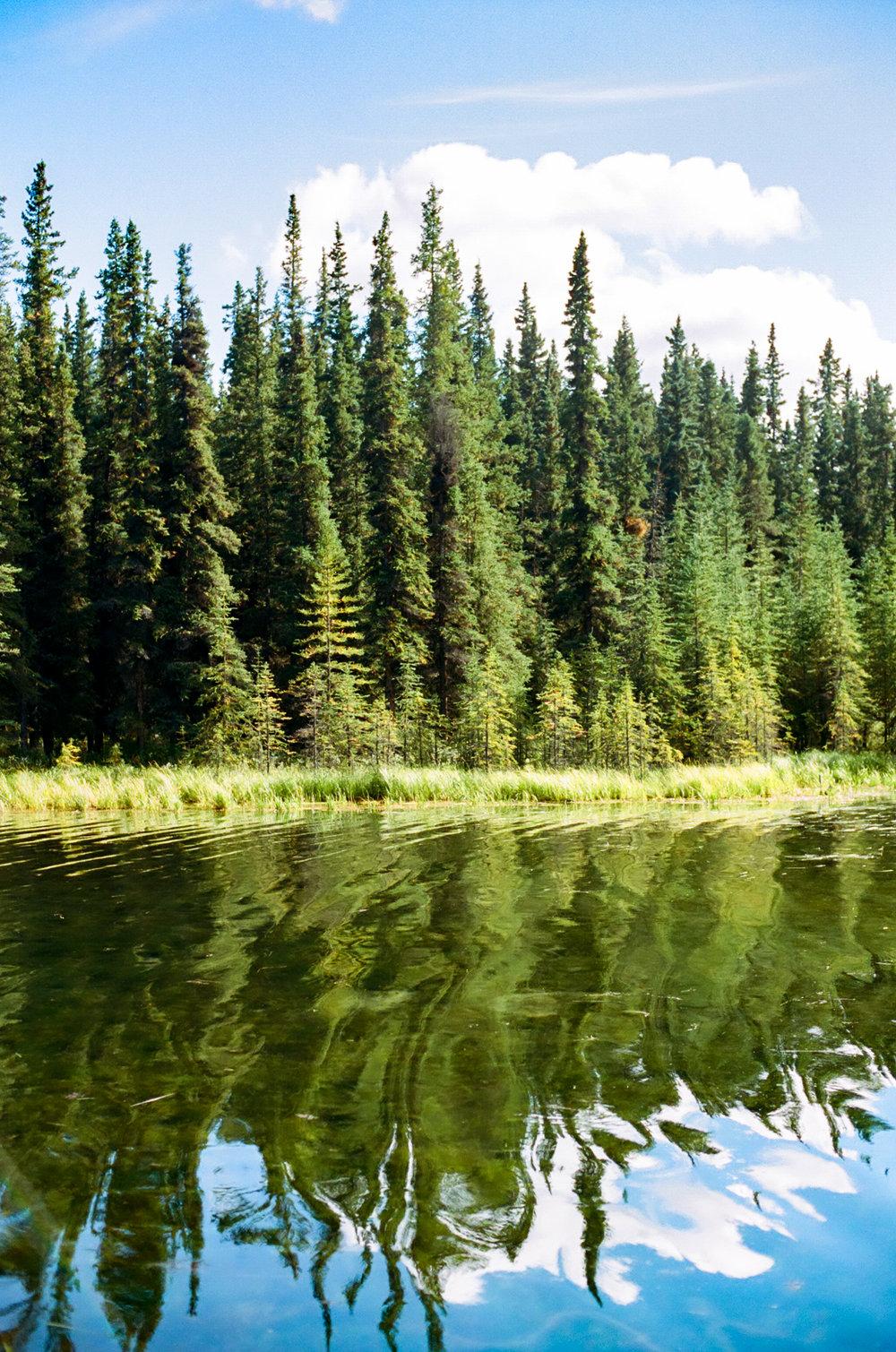 blurry lake-000131290032.jpg