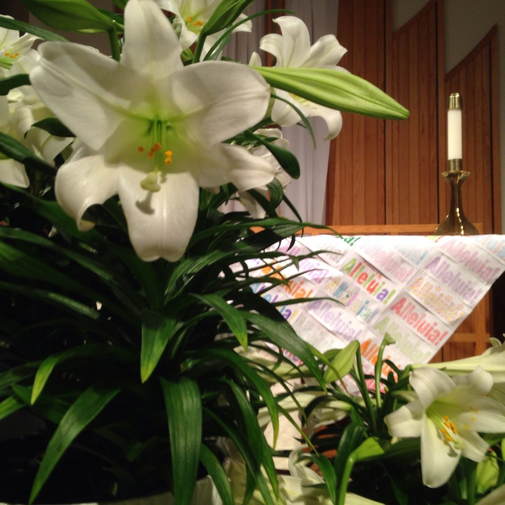 Easter worship - spring time and new life abounds!
