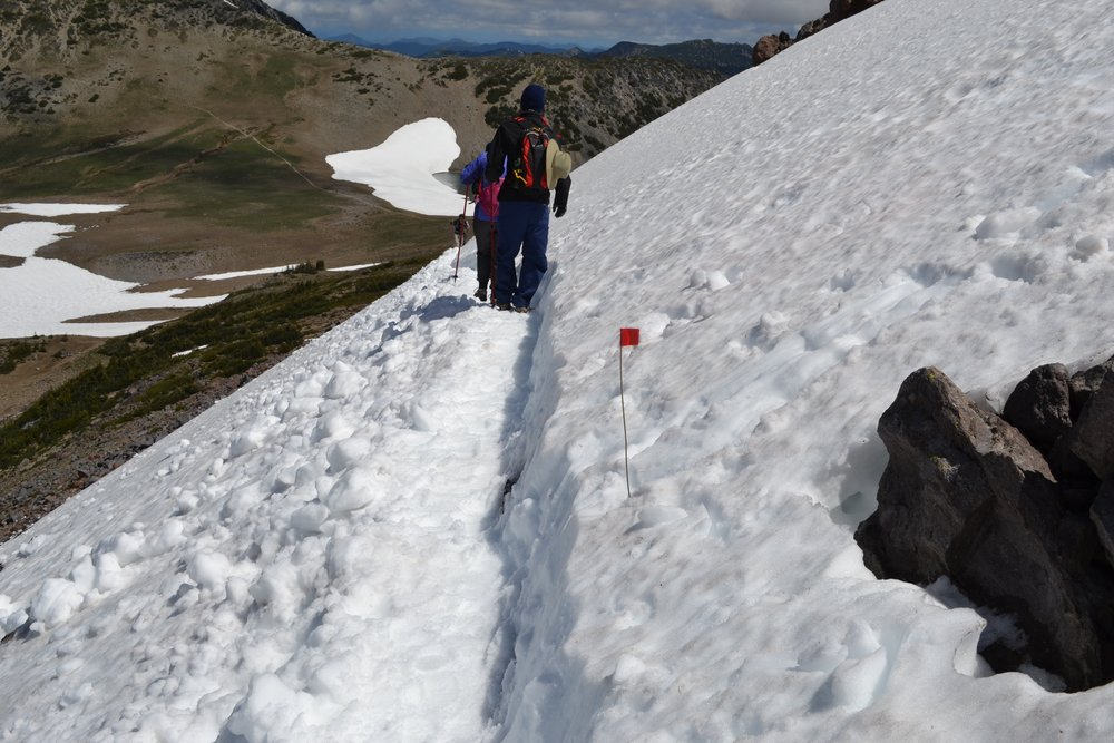 snow path on rainier.jpg
