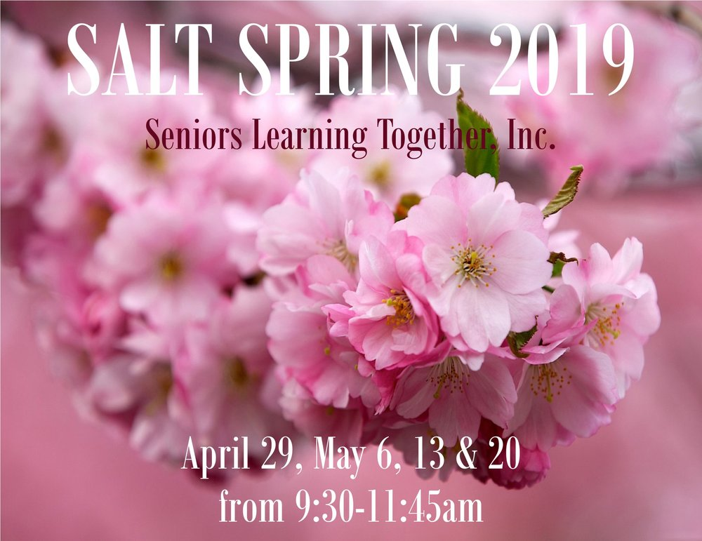 SALT+Spring+2019+for+web.jpg