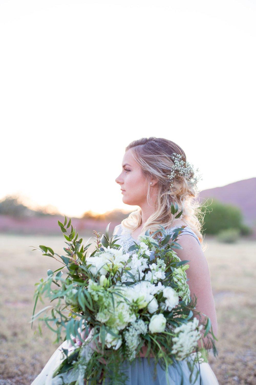 Renee Shifflet Photography