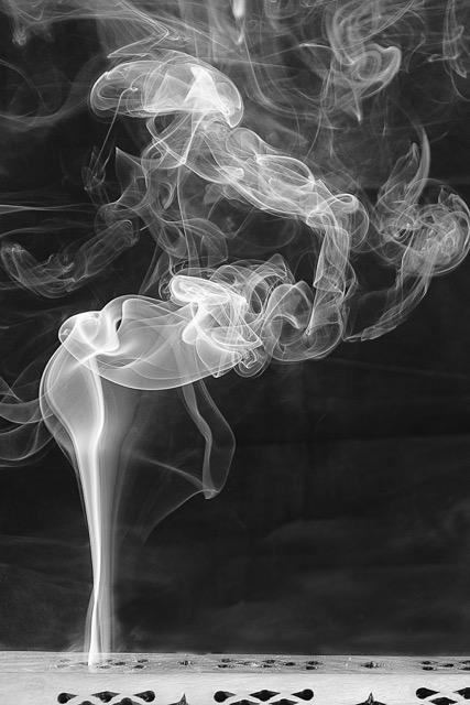 S Incense 190  mono print.jpeg