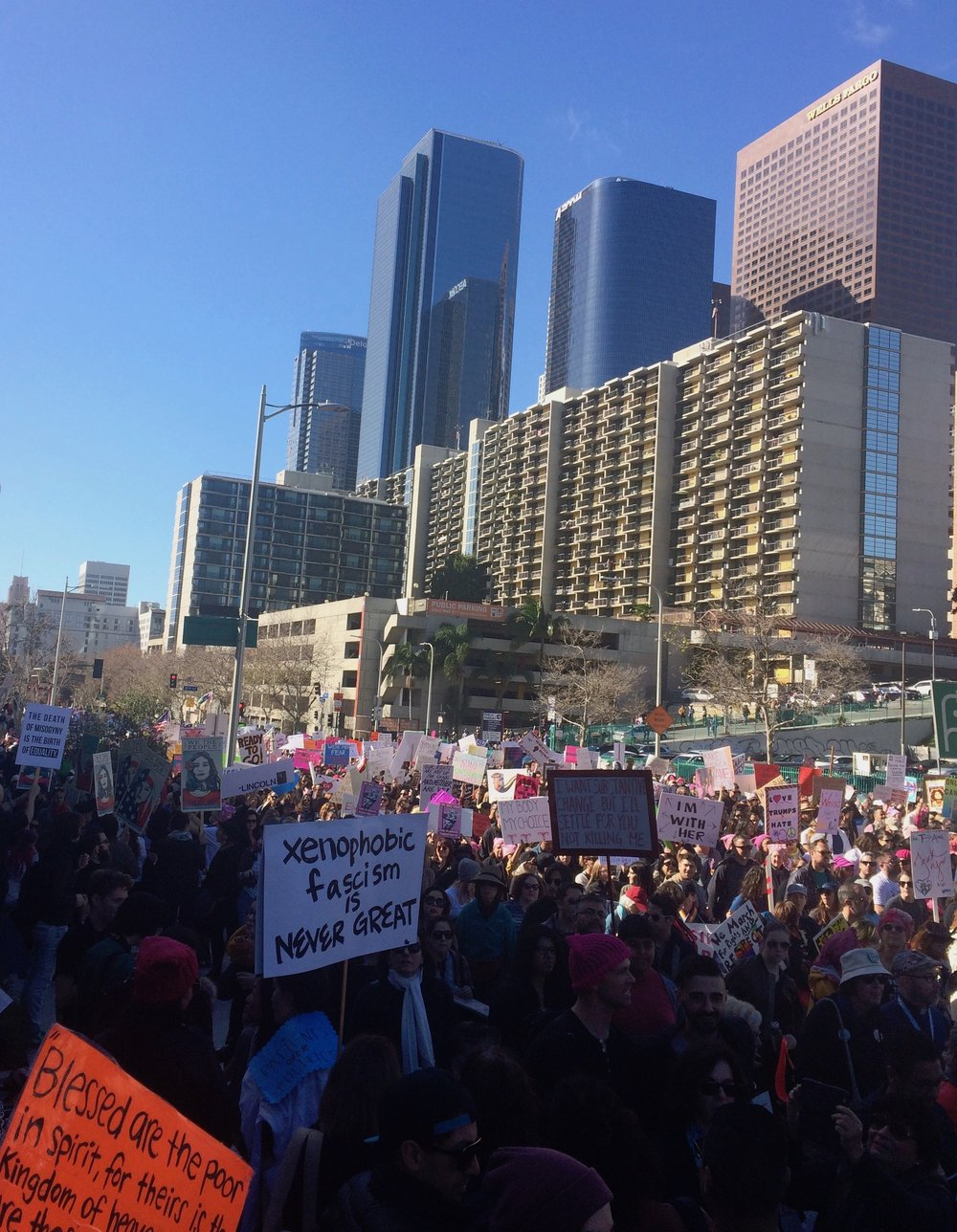 Demonstrators flooded downtown Los Angeles on January 21st. (Photo by Loud Owl)