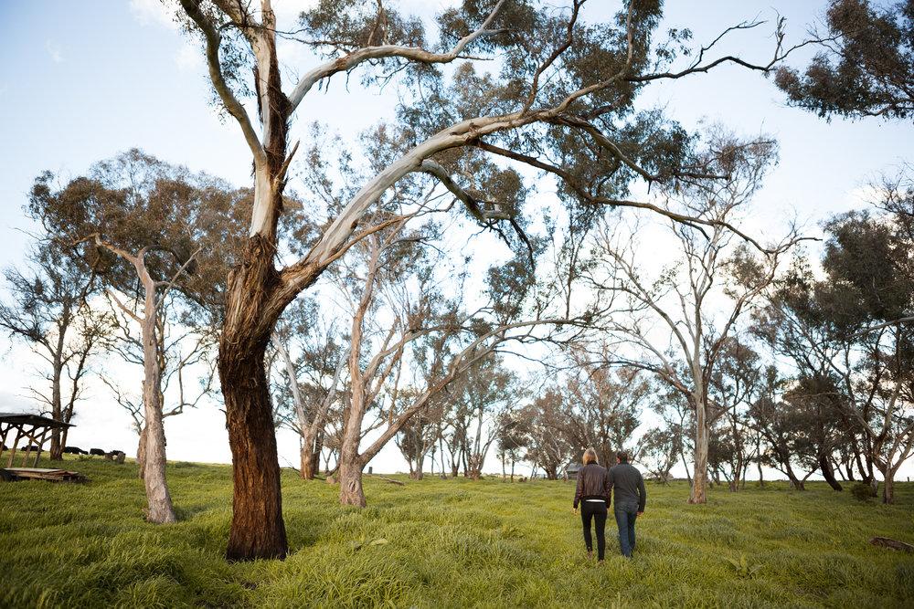 Matt&Lisa_Web-19.jpg