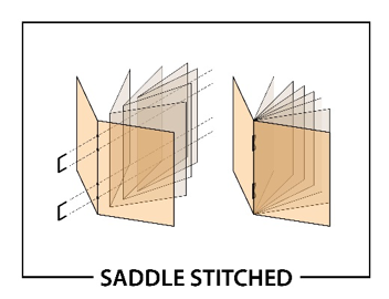 saddlestitched.png