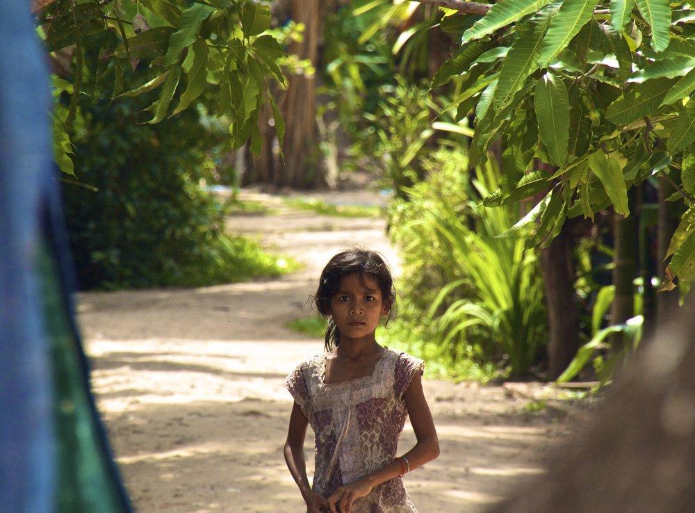 ta prohm siem reap cambodia 1.jpg