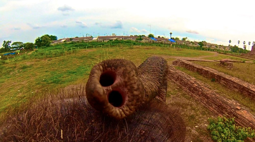 ayutthaya thailand elephant rides 1.jpg