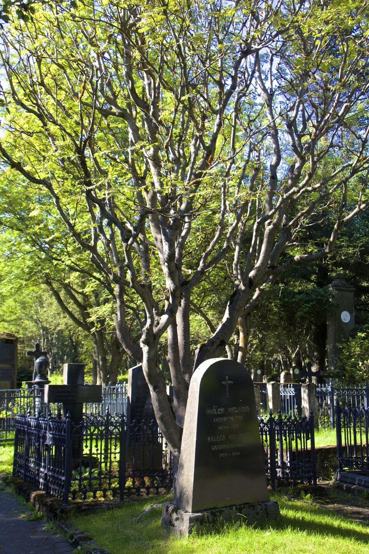 Hólavallagarður Cemetery Reykjavik 8.jpg