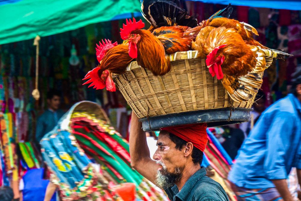 dhaka bangladesh new market 7-2.jpg