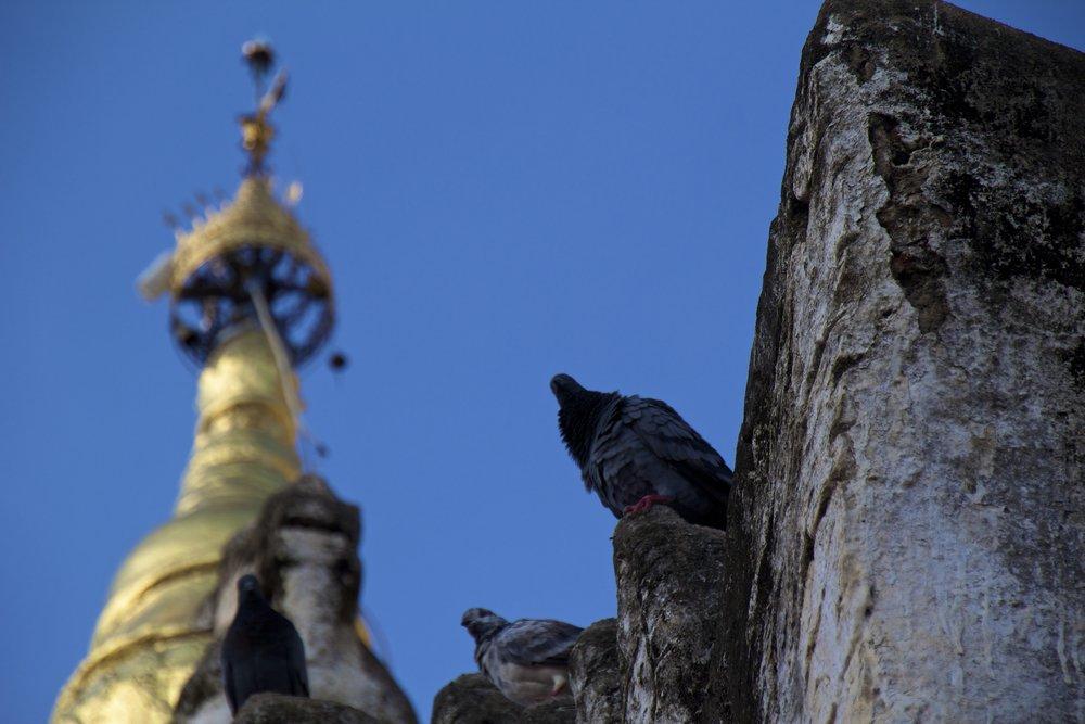 bagan burma myanmar buddhist monastery 5.jpg