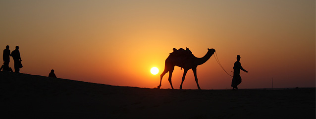 jaisalmer-dunes.jpg