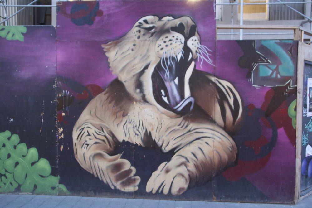 reykjavik street art 13