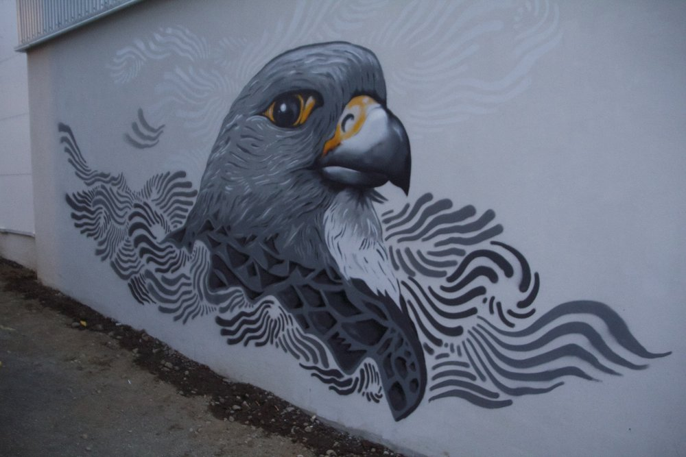 reykjavik street art 4