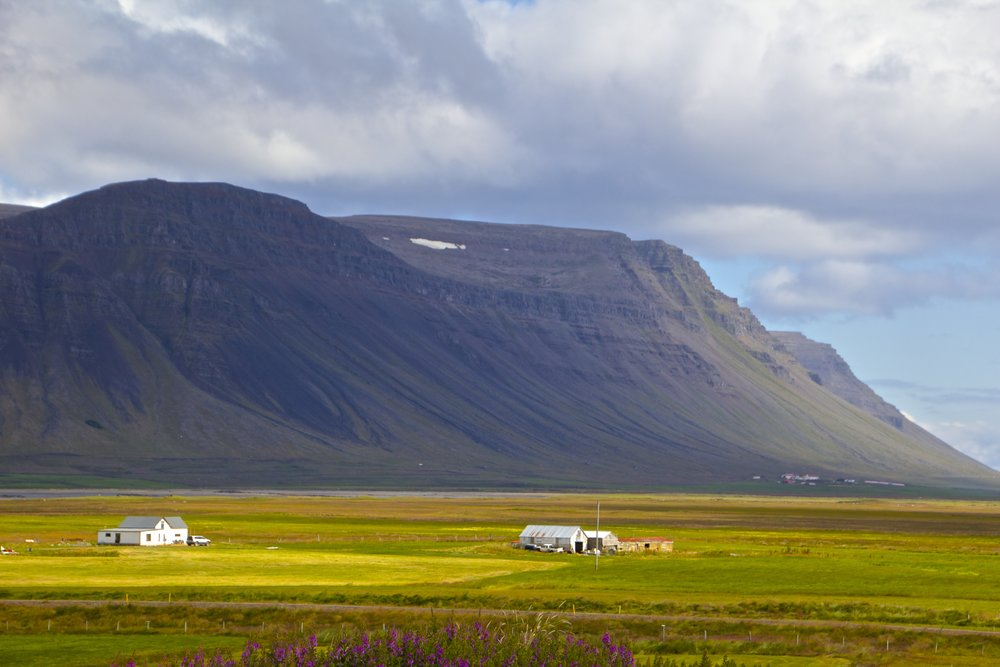west fjords roads iceland 4