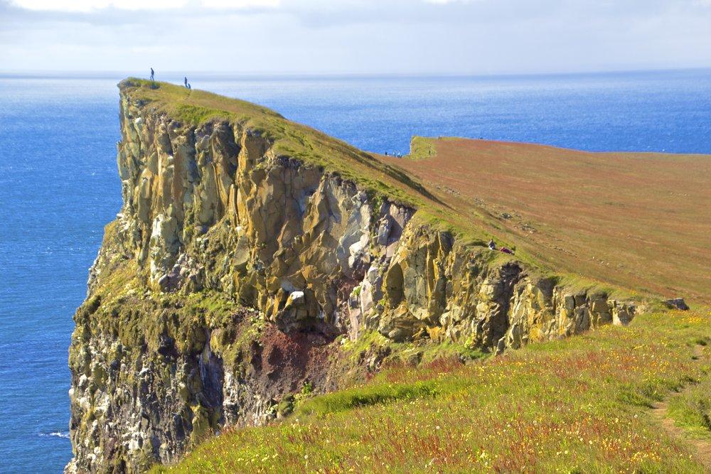latrabjarg-cliffs-iceland-18