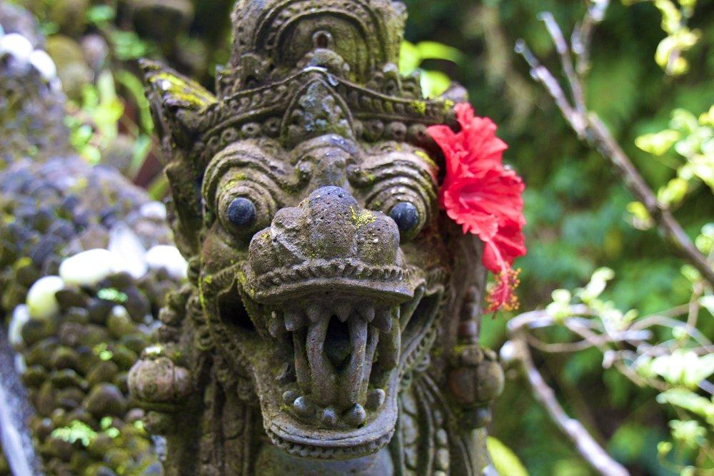 ubud bali indonesia 9.jpg