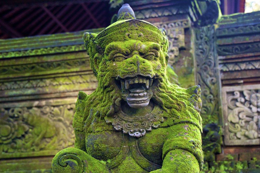 ubud bali indonesia 10.jpg