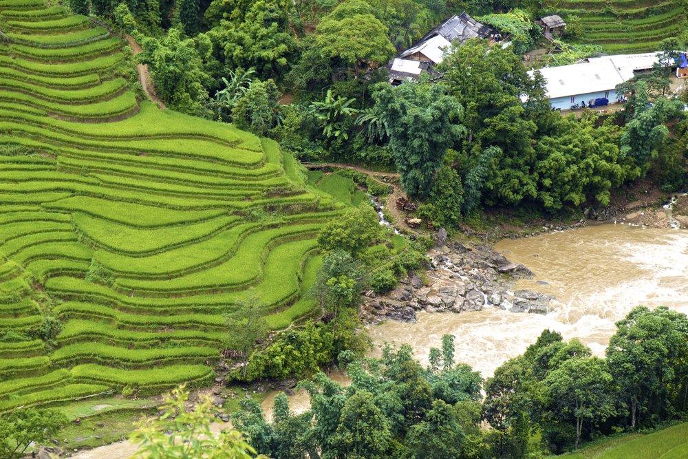 sa pa lao cai vietnam rice paddies 29.jpg